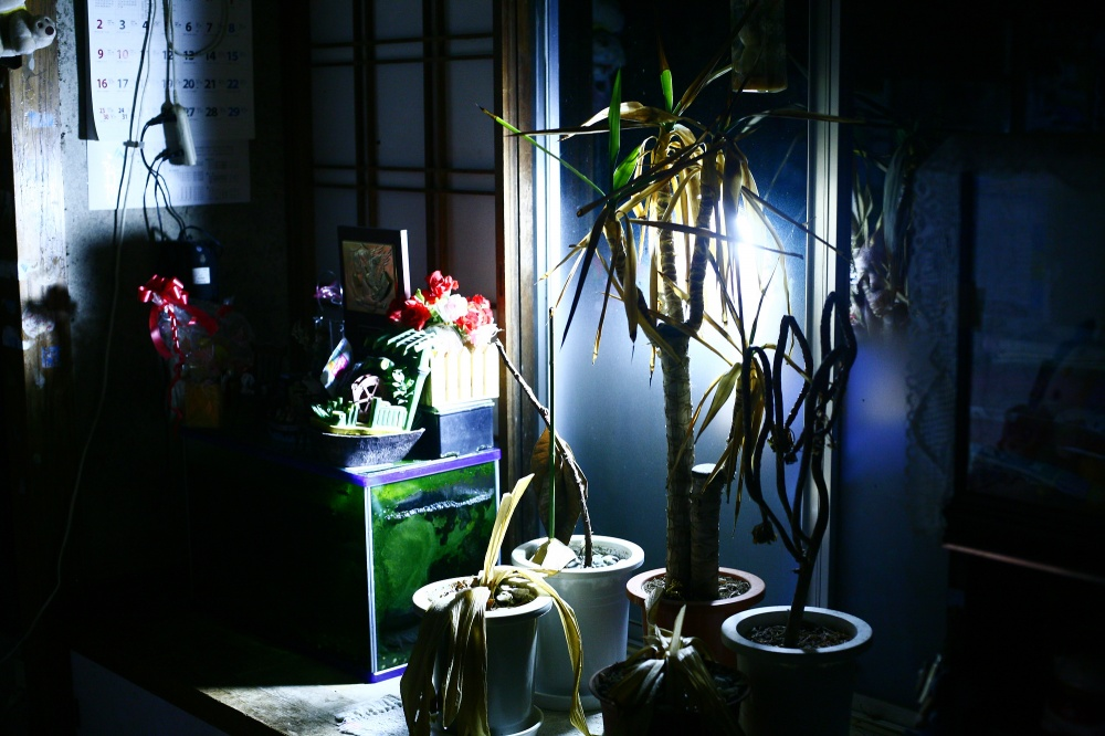 Art and Documentary Photography - Loading 30-60-61-JP_Fukushima12_81003z.jpg