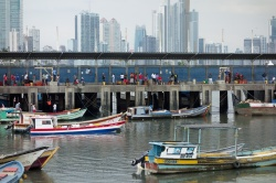 Art and Documentary Photography Blog - Loading Panama City