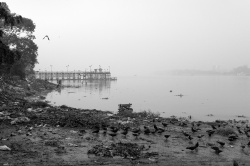 Art and Documentary Photography Blog - Loading Hooghly way of life