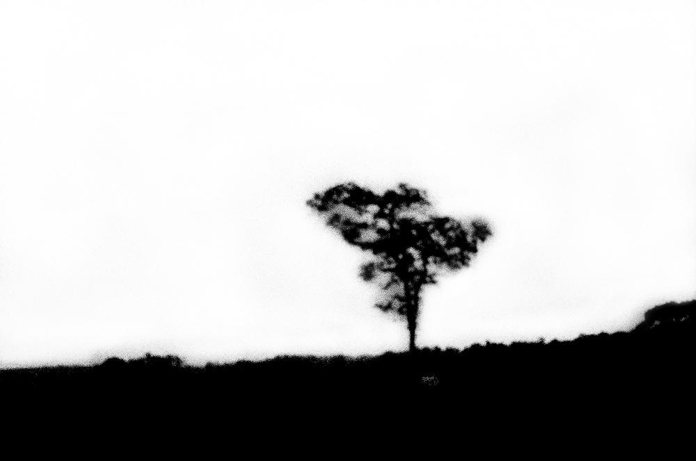 Art and Documentary Photography - Loading LOOMING_0003.JPG