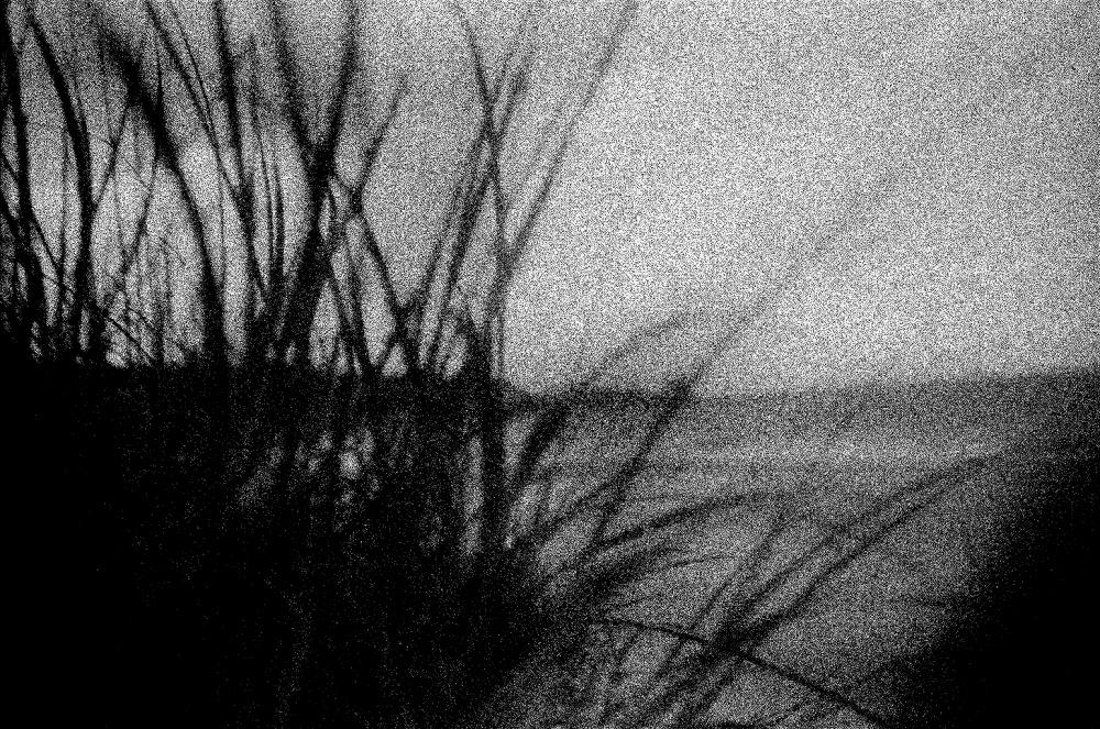 Art and Documentary Photography - Loading LOOMING_0035.JPG