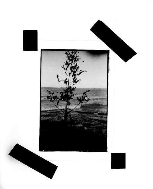 Art and Documentary Photography - Loading LOOMING_0044.JPG