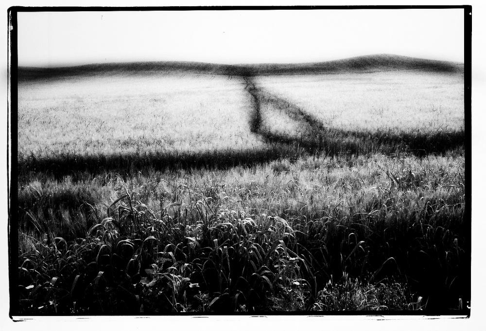 Art and Documentary Photography - Loading LOOMING_0079.JPG