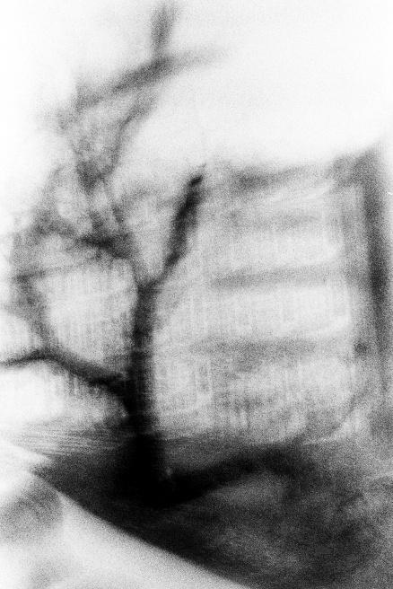 Art and Documentary Photography - Loading LOOMING_0083.JPG